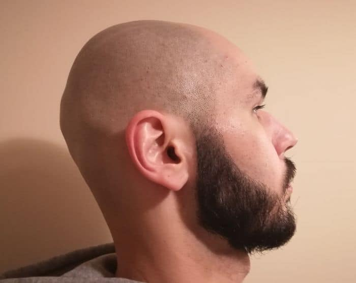 Andis vs Wahl Shavers: My experience with using their different finishing tools.