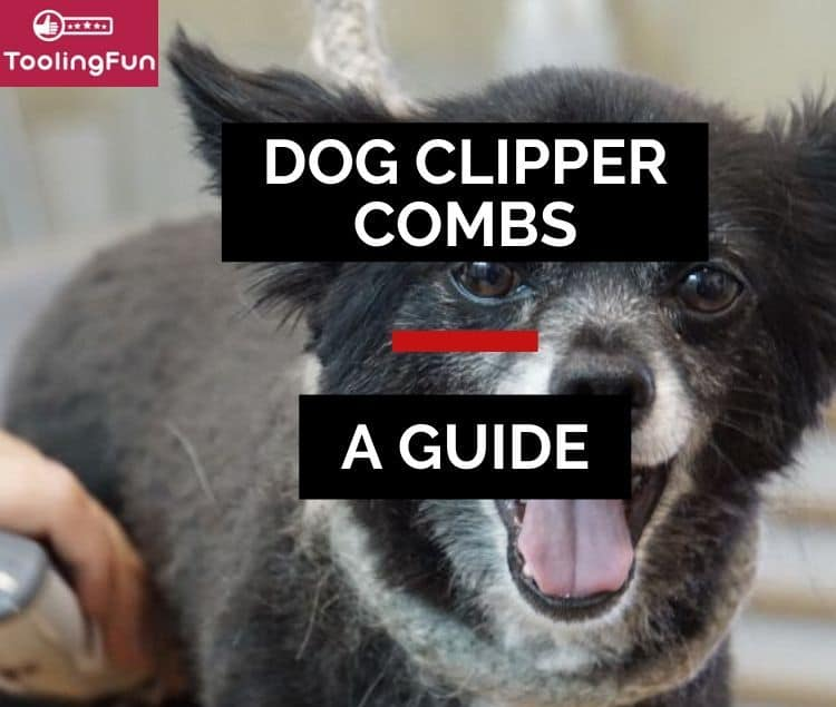 Dog grooming comb attachments: A guide how and when to use them. Featuring Wahl, Andis and Oster as brands.