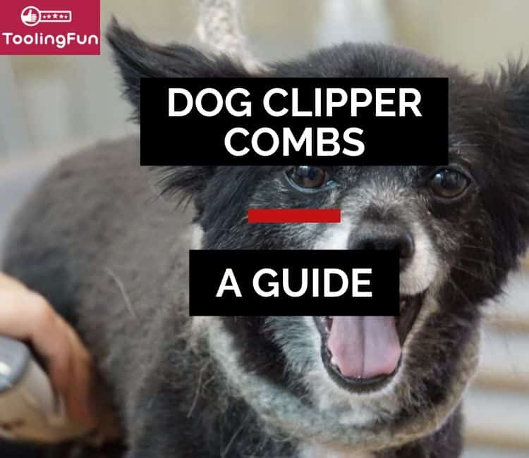Clipper Combs for Dogs: How & When to Use Them